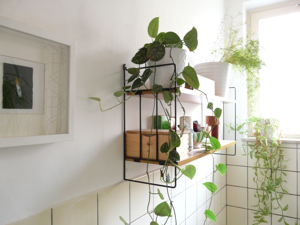 10 Simple Ways to Revitalize Your Old Bathroom - Bring in Some Plant Life