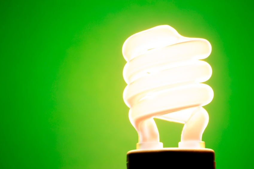 7 Ways to Go Green Around the House (Indoors and Outdoors! - Energy Efficient Light Bulb