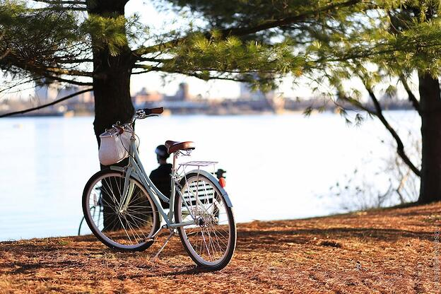 6 Key Habits of Energy Efficient Homes in Canada - Bike instead of driving