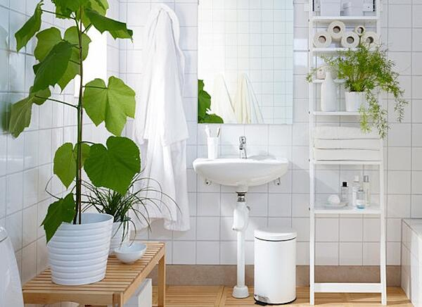 7 Apartment Bathroom Ideas For Your First Place - Add a Plant